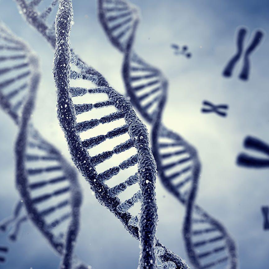 bio-x-genetic-screening